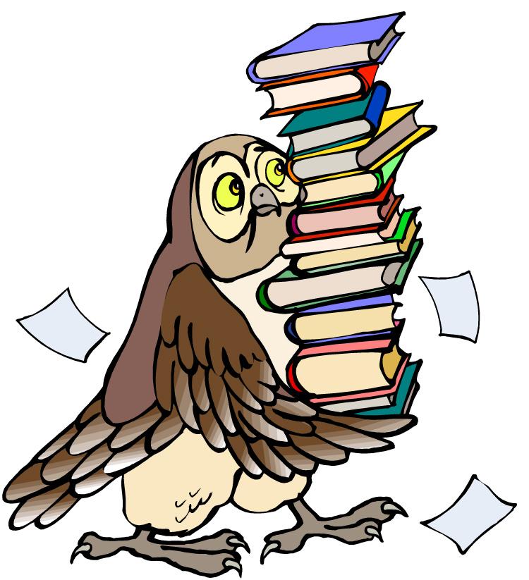 hibou pile de livres